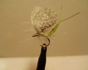 12 Fly Fishing Flies