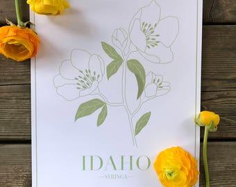 end of summer SALE - idaho state botanical  art print - wall art - wall decor
