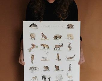 Animal Alphabet Print (18x24)