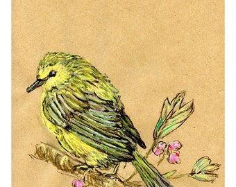 Warbler 8X10 9X12 or 11X14 print - Bird Art Pastel Mixed Media Drawing