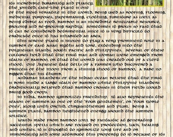 BAMBOO MAGIC Properties, BOS Instant Download Page, WaND, Bark Scrolls, Book of Secrets, Glamerie Pages