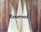 Reserved for Peggy / Shipping charges for Set of 3 Primitive Wooden Trees / Custom sizes Color choices