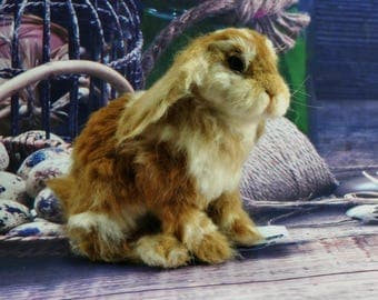 Needle Felted  Wool Animals, Holland Lop Rabbit. Easter bunny rabbit,  Easter collection 2017 by  Daria Lvovsky