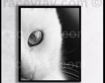 "Khao Manee Cat Print, Black and White Photography, Pet Gift, Abstract Wall Art, Kitten Photo, Cat Decor, ""Walter"""