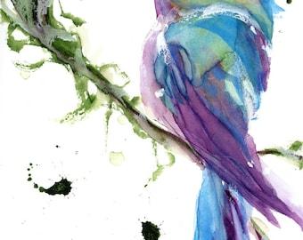 Large Hummingbird Art Print,  12 x 16 Bird Art, Colorful Hummingbird Art Print