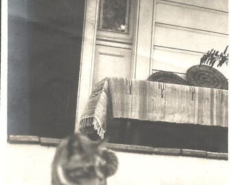 "Vintage Photo ""Here, Kitty, Kitty"" Tabby Kitten White Paws Kitty Cat Found Vernacular Photo"