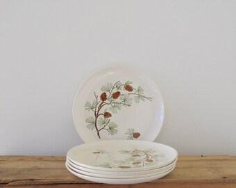 Pine Cone dinner Plates- Set of 5