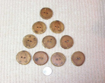 10 River Birch Tree Branch Buttons, 2 Hole Rustic Wood Buttons Handcrafted Wooden Buttons, Knitting, Crochet, Fiber Arts Embellishments