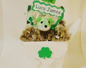 St. Patrick's Day Cat or ferret gift basket, cat treats, cat toys,personalized cat gift, personalized ferret gift, ferret treats,ferret toys