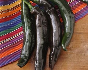 VPPH) HOLY MOLE' Hot Pepper~Seeds!!!!~~~~~Nutty Flavor!!