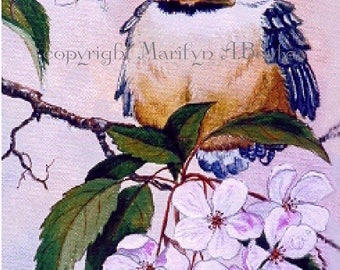 ACEO LIMITED EDITION Print; run of only 20, baby chickadee, crab apple blossoms,from an original painting, 2.5 x 3.5 inches, feathers,wings,