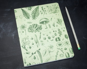 Plants & Fungi Vintage Softcover Notebook | Dot Grid, Flowers, Recycled Paper, Gardener, Botanist, Botany, Bujo, Science Gift, Green