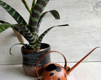 Vintage Metal Watering Can with Long Spout
