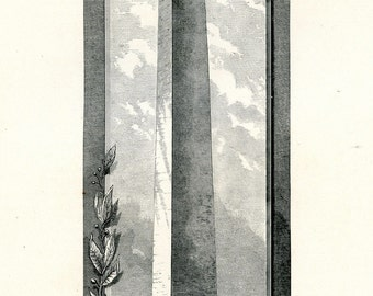 The Washington Monument. Original Antique Print from 'Picturesque Washington' by JW Moore, 1884.