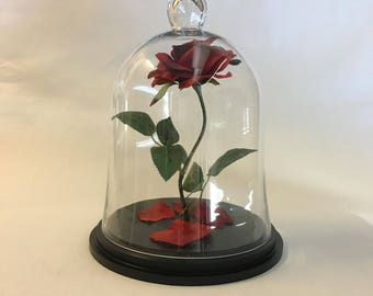 Beauty and the Beast Rose, Enchanted Rose, Rose in Glass Cloche Bell Jar - 13""