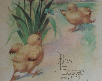 Chicks and Pink Tulips Vintage Easter Postcard
