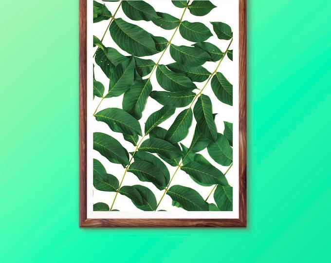 Leaf Wall Art Print Tropical Plant Photo Printable Wall Art Digital Download Green Leaves Photography Palm Leaf Print Tropical Wall Art Mint