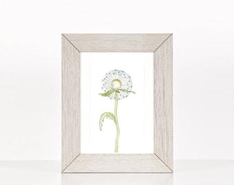 Pastel watercolor painting, Botanical art print. Simple art. Wall art for framing.  Simple, blue, contemporary dandelion flower.