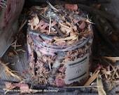 "NINE SACRED WOODS Huge 16oz Jar ""Old European Witchcraft""™ Blend w/ Alder Apple Ash Birch Cedar Hawthorn Oak Rowan Willow, English Oak Oil"