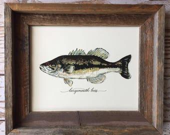 FRAMED Largemouth Bass Art Print, 8x10, 11x14