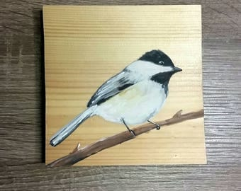 Black Capped Chickadee painting on pine, bird watching, rustic painting