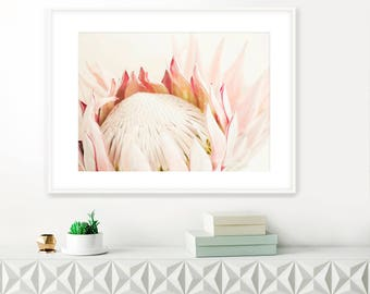 Printable King Protea Photograph No.119, Flower Photography, Protea print, printable wall art, Floral Decor, Flower Prints