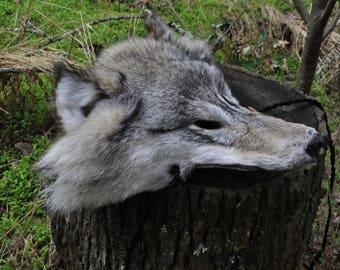 Gray Wolf    Warrior Mask