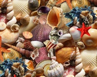 Sea Shells Toss / Seashell Fabric / Landscape Medley by Elizabeth Studio 392 /  Sea Shells All Over / Yardage and Fat Quarters