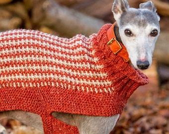 Knit Your Own Dog Jumper Kit - Medium