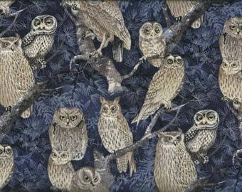 Timeless Treasures Quilting Cotton Fabric Owls 126593 - 1/2 Yard