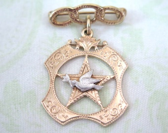 Vintage Daughters of Rebekah Odd Fellows Dove and Olive Branch Pin