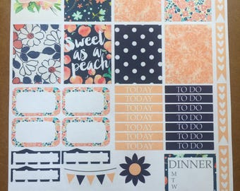 Erin Condren a Planner Vertical Navy & Peach Weekly Kit