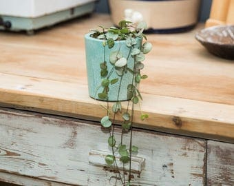 Handmade Emerald Green Plant Pot with String of Hearts Plant