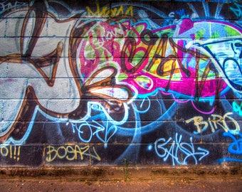 Graffiti Backdrop - Graffito wall, toddler, birthday - Printed Fabric Photography Background W1252