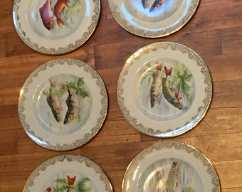 A Beautiful Set of Six Vintage Limoges Porcelain Plates with Fish Motifs