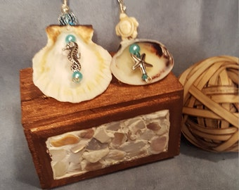Sea Shell Ornaments (set of two) Novelty Duo