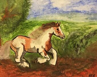 Gallop through the meadows