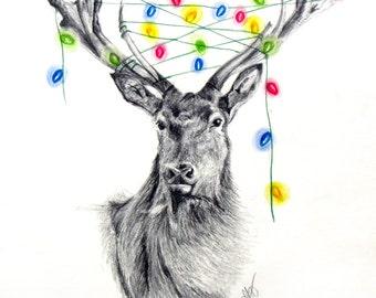 Print - Reindeer