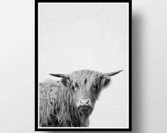 Bull Print, Nursery Animal Print, Bull Wall Art, Nursery Print, Farm Animal Print, Nursery Decor, Nursery Printable, Nursery Animal Art
