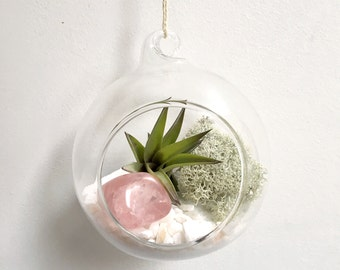 Mothers Day Rose Quartz Air Plant Garden Kit • love terrarium tillandsia birthstone crystal birthday personalize gift diy present airplant