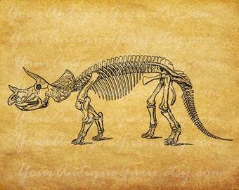 Triceratops Dinosaur Image Digital Download Skeleton Anatomy Graphic Printable Artwork Vintage Clip Art Jpg Png Eps