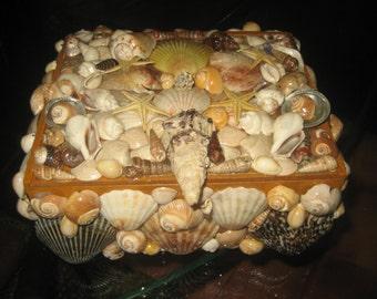 Slide Open Seashell Treasure Box/Jewelry Box/Shells on Wooden Cigar Box