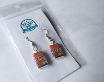 Harry Potter mini book earrings