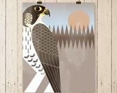 Peregrine Falcon art print, falcon art print, falcon artwork, falcon art poster, falcon art, birds of prey art, bird art, wall decor