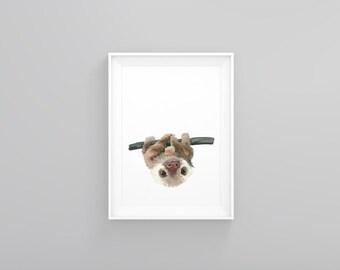 Sloth • Watercolor • Painting • Baby • Animal • Print