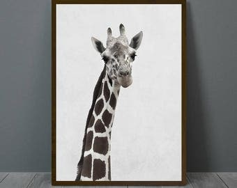 Giraffe Print, Giraffe Wall Decor, Giraffe Poster, Giraffe, Animal Print Wall Decor, Printable Giraffe Wall Art