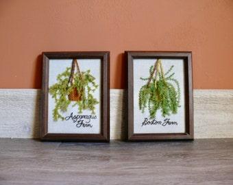 2 Crewel Embroidery Needlework Samplers, 'Asparagus Fern', 'Boston Fern', 3D Framed Wall Art, Sunset Jiffy Stitchery, '70s Boho Kitsch Decor