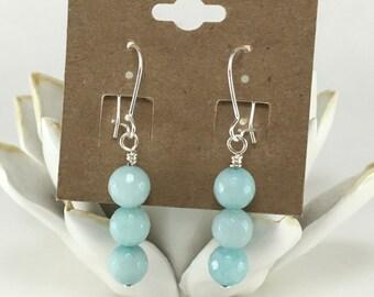Powder Blue Beaded Earrings