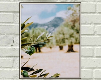 Olive Branch Italy, Printable Poster,Nature, Digital Photography, Instant Download, Olive Branch Picture, Printable art, Green Decor