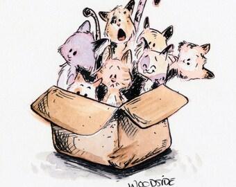 Catbox Print